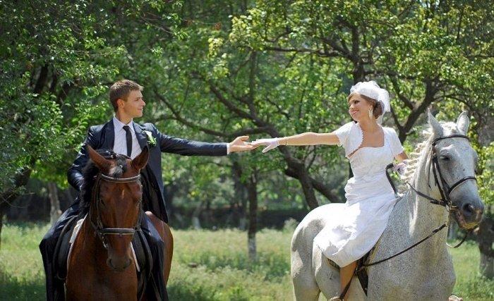 Black horse wedding