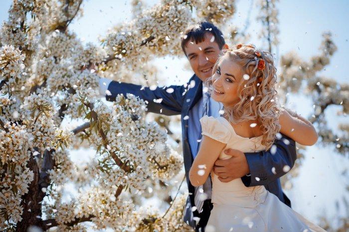 Свадьба в яблоневом саду