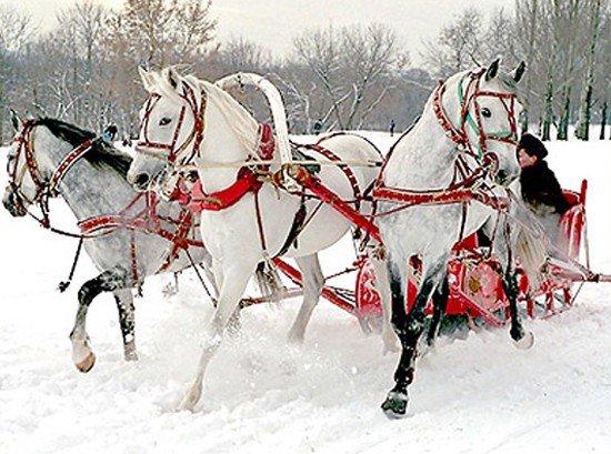 Сценарий на русскую зиму