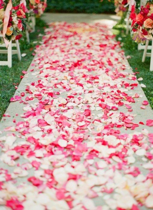 лепестки роз для свадьбы картинки старички поздравляют днем