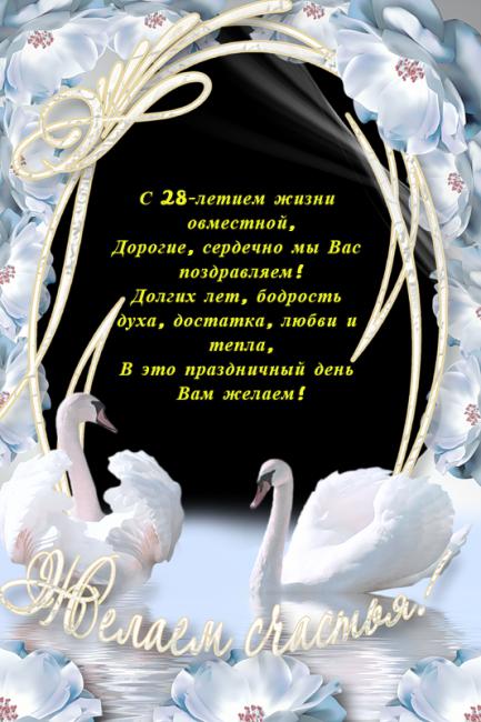 Поздравление к 28 летию свадьбы
