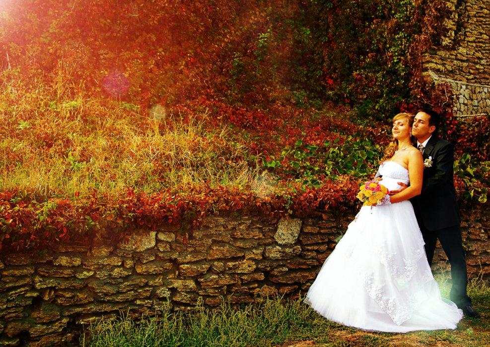 Реквизит для свадебной фотосессии весной в парке внимание